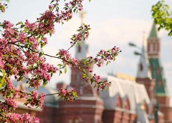 Майские праздники в Сити Отеле